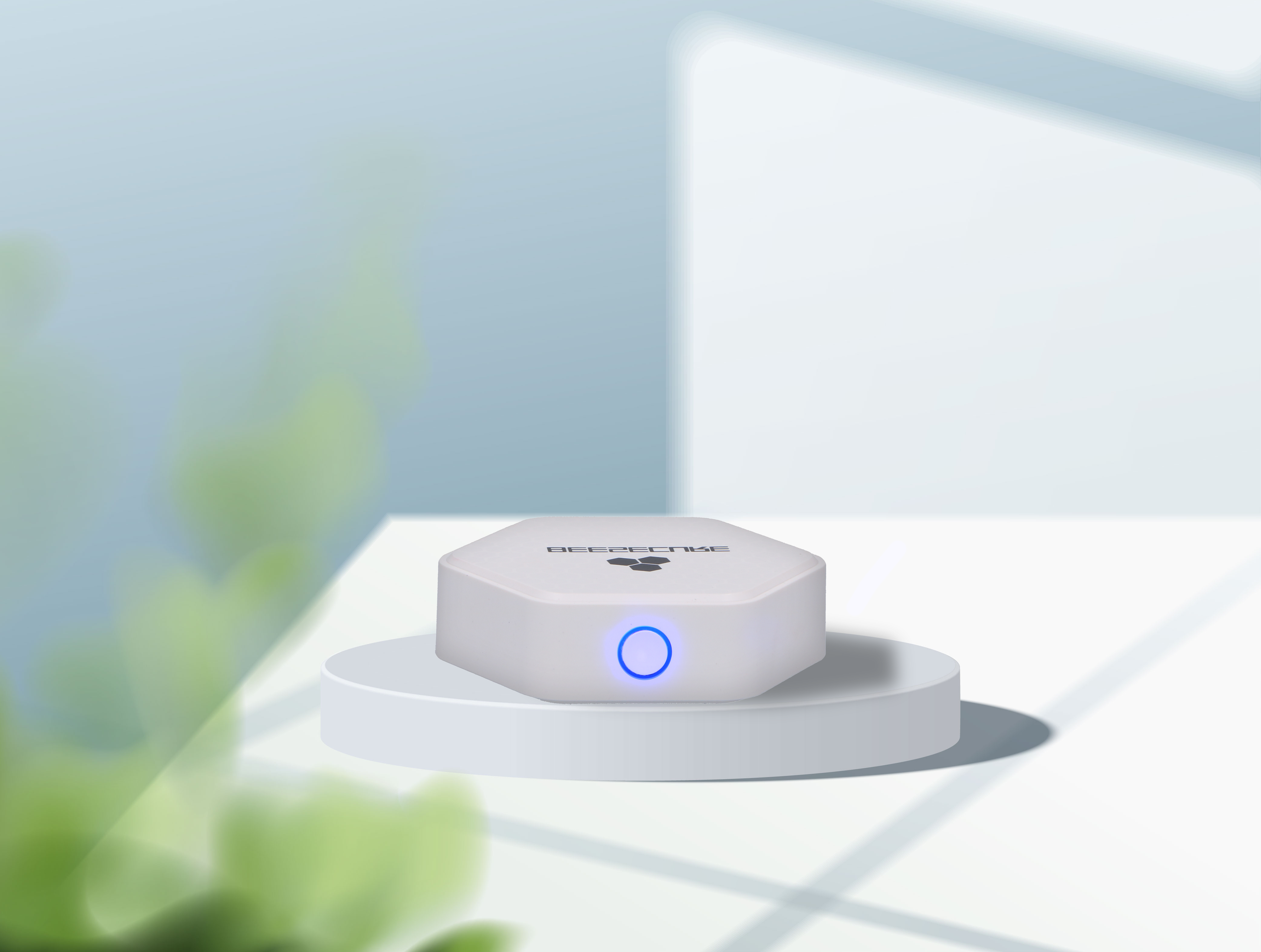 BeeSecure smart hub